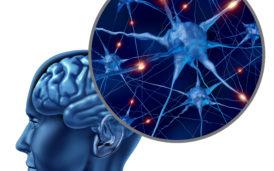 Jak utrzymać mózg w świetnej formie do późnej starości